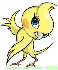 cartoon cockatiel watermarked7b dancingbirdy jpg