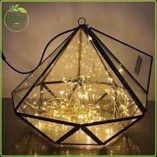 geometric ornament sculpture terrarium air plant display vessels