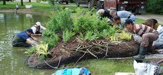 landscaping companies in in call 800 694 0970
