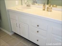 Bathroom Cabinet Hardware Ideas Bathroom Design Bathroom Cabinet Ideas Fresh Brilliant 80