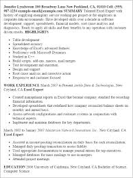 exle resume summary of qualifications excel resume template application development computer skills resume
