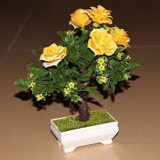 grã npflanzen fã r balkon beautiful dekorative pflanzen fürs wohnzimmer gallery home