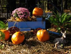 thanksgiving retreat