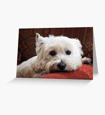 westie greeting cards redbubble