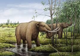 woolly mammoths archives 80beats 80beats