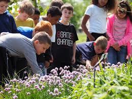 garden family capital campaign powell gardens kansas city u0027s botanical garden