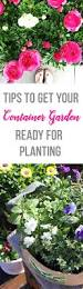 241 best images about gardening on pinterest gardens container
