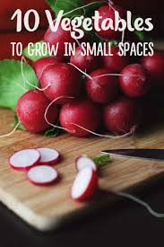 gardening in small spaces 10 best vegetables to grow