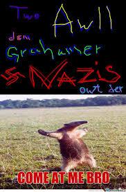 Anteater Meme - anteater memes