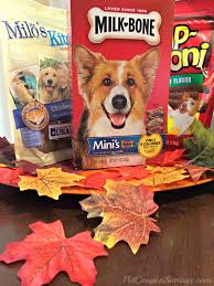 thanksgiving pet photos diy thanksgiving doggy treat bags free treat giveaway treatthepups