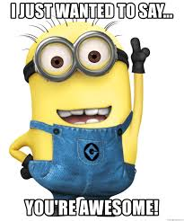 You Are Awesome Meme - i just wanted to say you re awesome despicable me minion