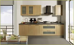 kitchen attractive cool frosted glass kitchen cabinets