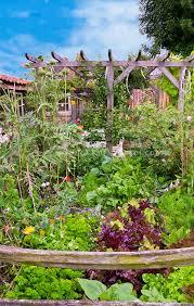 vegetable garden with flowers red lettuce artichokes trellis