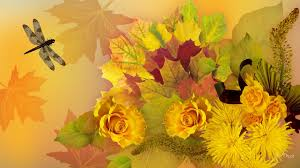 Fall Flowers Flower Roses Leaves Yellow Amber Fall Flowers Abstract Autumn