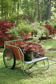 how to plant a japanese maple tree southern living