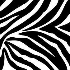 go wild black and white zebra print wall pops blox wpb99051