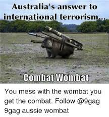Aussie Memes - australia s answer to international terrorism combat wombat you mess
