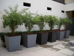 planters amusing large tree planters commercial planters