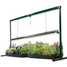 best grow lights for vegetables how to select the best indoor grow lights for vegetables urban