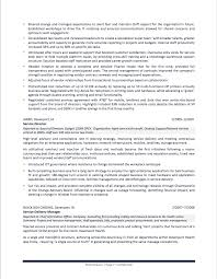 it resume summary sample cio resume free resume example and writing download it resume example