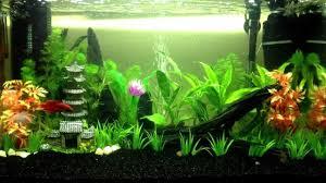 29 best home aquarium furniture ideas to beautify your room
