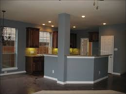 kitchen dark kitchen cabinets with light countertops brown