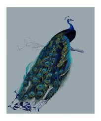 pin by magusarte on ilustraciones pint pinterest beautiful