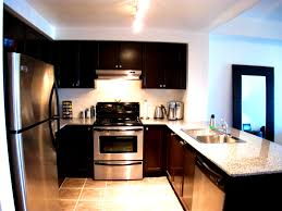 apartments inspiring kitchen design ideas and photos for small