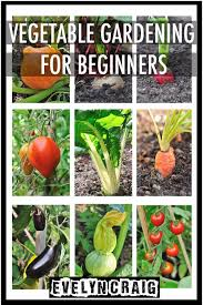 Gardening For Beginners Vegetables by Cheap Vegetable And Names Find Vegetable And Names Deals On Line