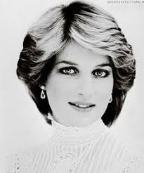 princess diana fan art princess of class pinterest princess