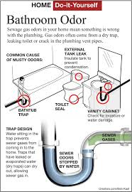 view sewer gas smell in bathroom from toilet luxury home design