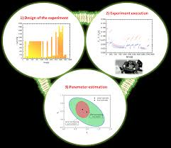 model based design of experiments for microalgae growth models