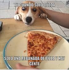 Meme Pizza - el título quiere una pizza meme by danmangonzhdz memedroid