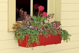 Wall Mount Planter by Red Color Wall Mounted Window Plastic Planter Box With Flower