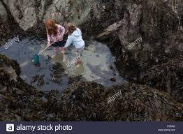 crab net child stock photos u0026 crab net child stock images alamy