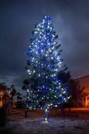 tree ceremony u0027lights u0027 up patrick afb u003e 45th space wing u003e article