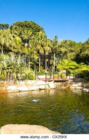Mt Annan Botanical Garden Australian Botanic Garden Mount Annan Near Sydney New South