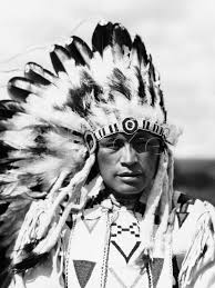 are native americans hair thin and soft fact or myth native americans can t grow any facial hair