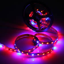 red and blue led grow lights plant growth led grow light strip red blue 660nm 460nm 14 4watt