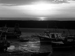 black and white challenge u2013 lizalizaskysaregrey