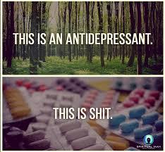 that this is an antidepressant meme sucks vol 3 no 49 2