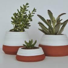 Indoor Planter Pots by Shop Indoor Plant Pots On Wanelo