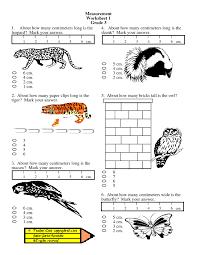 maths worksheets for grade 2 measurement measuring worksheets