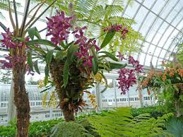 Westbury Botanical Gardens Who Has A History Here At The Gpod Of Taking Us On