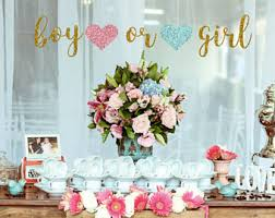 gender reveal party decorations gender reveal party etsy