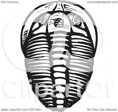 clipart of a black and white woodcut trilobite fossil royalty