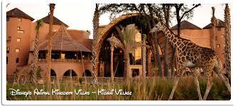 Animal Kingdom 1 Bedroom Villa Disney U0027s Animal Kingdom Villas Kidani Village Magical Rentals