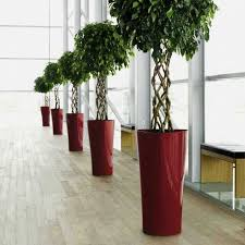 Tall Plastic Planters by Decorative Plastic Plant Pots Tall Plastic Planters Flower Pot