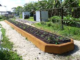 attractive long raised garden beds flowers as companion plants in