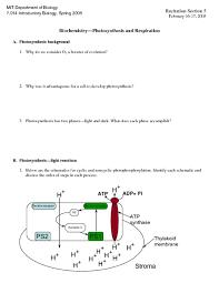 biochemistry basics pogil answer key 28 images 138 class